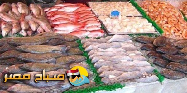 اسعار الاسماك اليوم الجمعة 18-5-2018 بمحافظة الإسكندرية