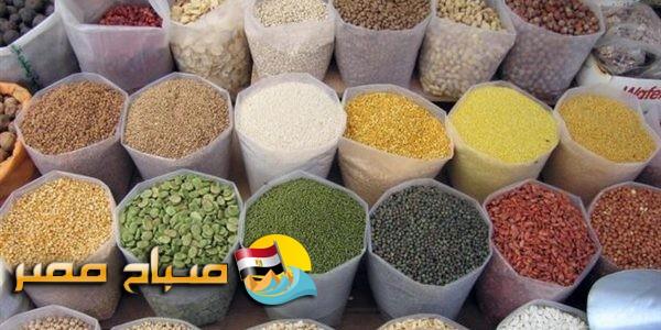 اسعار البقوليات والتوابل والأعشاب فى المنيا اليوم السبت