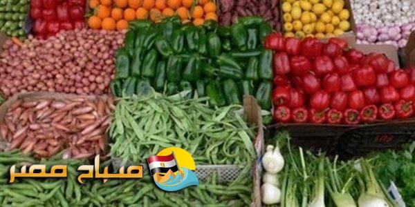 ننشر أسعار الكيلو جرام من الخضروات المتوقعة غدا الأربعاء 14-08-2019