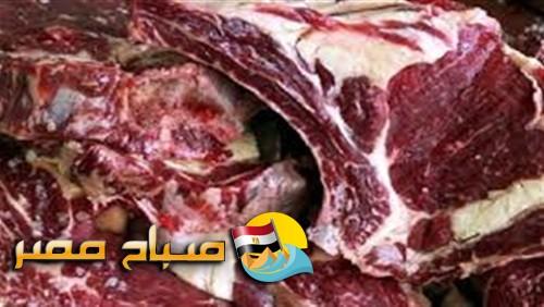 الامن يضبط 4.6 طن لحوم فاسدة بمطعم قبل طهيها وبيعها للمواطنين بشبرا الخيمة