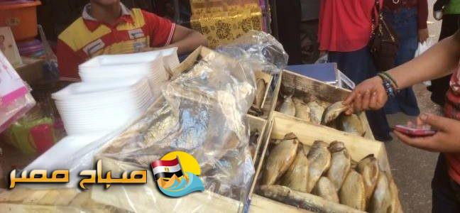 إعدام أسماك مملحة فاسدة فى حملة على الاسواق بالإسكندرية