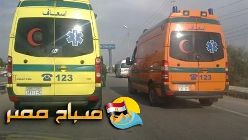 مصرع سائق وإصابة 9 آخرين في حادث تصادم سيارة ميكروباص بالإسكندرية