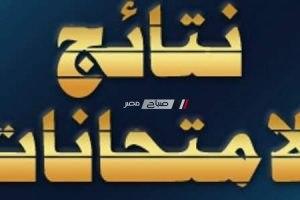 رابط سريع للوصول الى نتائج امتحانات الابتدائية بمحافظة القاهرة