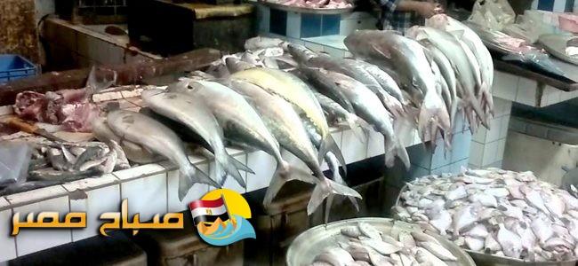 أسعار الأسماك اليوم السبت 20-10-2018 بالإسكندرية
