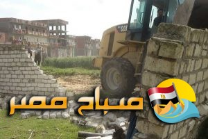 إزالة  22 حالة تعدى على الأراضي الزراعية بمساحة 1550 متر مربع بأبو حمص فى البحيرة