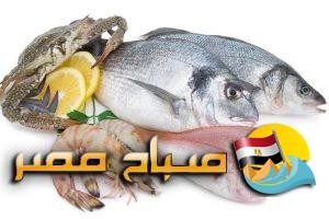 اسعار الاسماك فى اسواق محافظة الغربية اليوم الثلاثاء