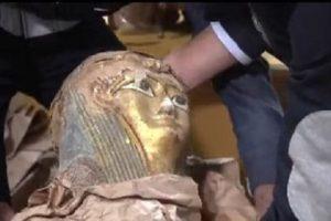 ضبط آثار مهربة فى حاوية دبلوماسية من الاسكندرية