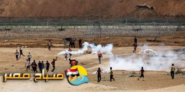 استشهاد 52 فلسطينى وإصابة 2410 برصاص قوات الاحتلال