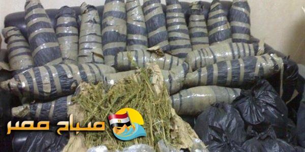 ضبط 3 طرب حشيش وأسلحة نارية في حملة أمنية موسعة بمحافظة البحيرة