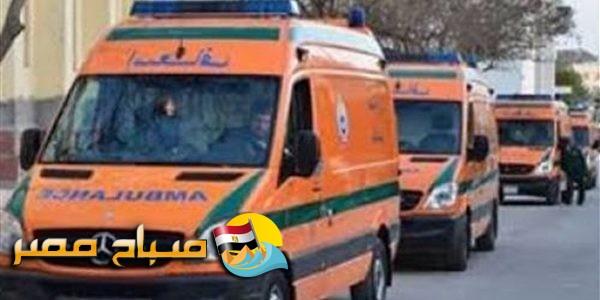 اصابة 6 أشخاص بجروح متفرقة في حادث تصادم سيارتين بطنطا