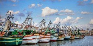 """""""نقيب الصيادين بدمياط """"يطالب بإزالة كافة التعديات على بحيرة المنزلة""""نقيب الصيادين بدمياط """"يطالب بإزالة كافة التعديات على بحيرة المنزلة"""