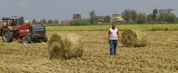 محافظ البحيرة : متابعة موضوع حرق قش الأرز وتدبير المكابس للمزارعين بالمحافظة