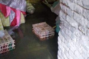 في استجابة لمطالب الاهالي شن حملة لتطهير بيارات الصرف الصحى بمدينة دمنهور