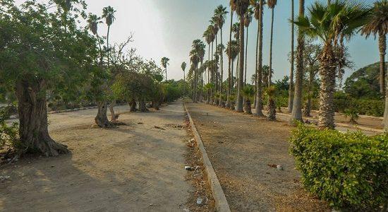 محافظ الإسكندرية ينفي شائعة بيع حديقة أنطونيادس