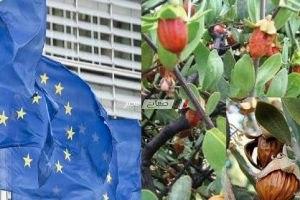 حصول منتج الجوجوبا المصرى الزراعى على شهادة الاورجانيك الأوروبية لأول مرة