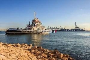 رسميا ميناء دمياط يعتمد طلبات التراكى آلياً بإستخدام التوقيع الإلكترونى