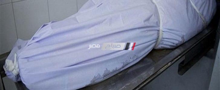 وفاة شخص وإصابة 2 فى حادث تصادم بالقليوبية