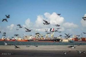 هيئة ميناء دمياط تتسلم خطاب من ميناء كوبر لتبادل الأخبار و الخبرات الجديدة… صورة