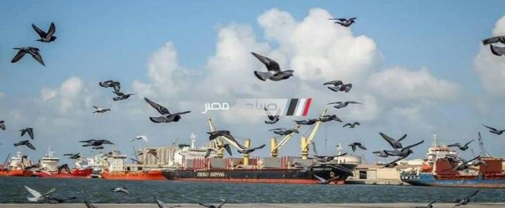 999 شاحنة تغادر ميناء دمياط بحمولة 56164 طن بضائع عامة