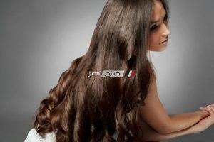 تعرفى على أسهل الوصفات لتكثيف الشعر