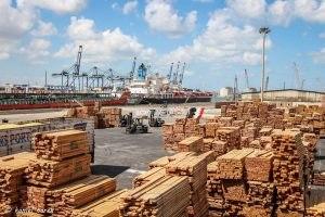 ميناء دمياط يستقبل 7 سفن حاويات وبضائع عامة واستيراد 1880 طن خشب
