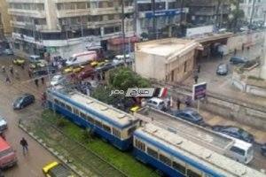 بالصور.. سقوط شجرة بسبب شدة الرياح أمام كلية طب الأسنان بالإسكندرية
