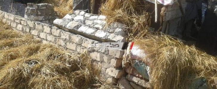 ازالة 19 حالة تعدي على 600 متر مربع من الرقعة الرزاعية في حملة مكبرة بقرية زرقوم