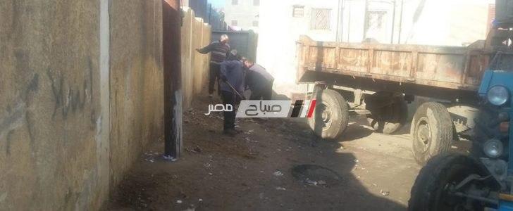 شن حملات لرفع النظافه بزاويه غزال و منشية الحرية بالبحيرة