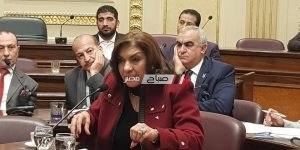 النائبة إيفلين متى عضو مجلس النواب عن محافظة دمياط