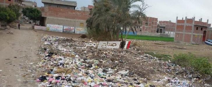 رئيس محلية دمنهور: متابعة حملات النظافة فى نطاق الوحدة المحلية بقرية زاوية غزال