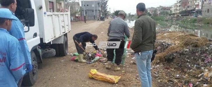 شن حمله نظافة بقرية دسونس ام دينار بدمنهور بعد شكاوى الاهالي