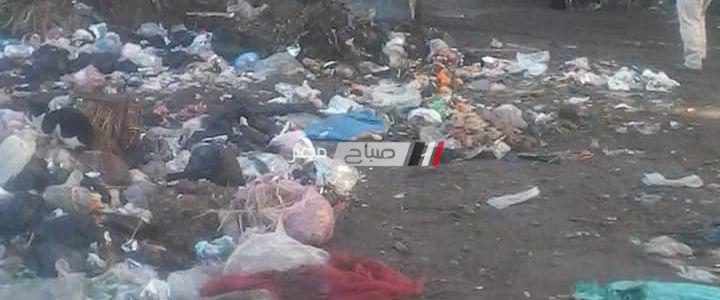 شن حملات نظافة مكبرة بنطاق الوحدة المحلية بقرية الابعادية