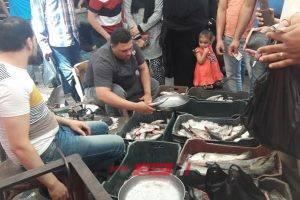 أسعار الأسماك اليوم الأحد 13-10-2019 بأسواق المحافظات المصرية