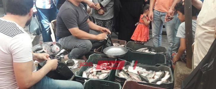 بالصور انخفاض اسعار الاسماك بدمياط والبسطاء يمتنعون وسط قلة الاقبال