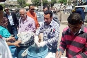 ضبط 150 كجم فسيخ غير صالح للإستخدام الآدمى في حملة مكبرة بكفر الشيخ