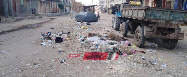 رئيس دمنهور: شن حملات نظافة مكبرة بالوحدة المحلية بقرية الابعادية