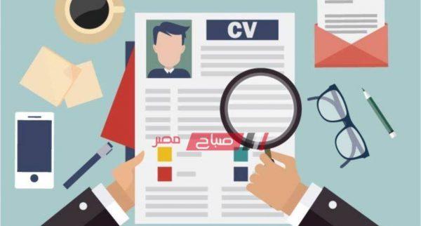 القوى العاملة بدمياط تعلن عن توفير 30 فرصة عمل جديدة... صورة