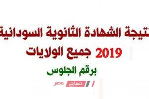 بالتزامن مع التظاهرات الإعلان اليوم عن نتيجة الثانوية العامة السودانية