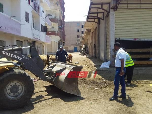 بالصور حملات مكثفه بأحياء الإسكندرية خلال عيد الأضحى - موقع صباح مصر