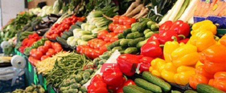 أسعار كل أنواع الخضروات في السوق المصري اليوم الخميس 27-2-2020