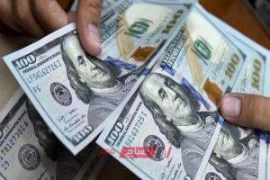 أسعار صرف الدولار والعملات الأجنبية أمام الجنية المصري اليوم الثلاثاء 19-11-2019 بالمركزي