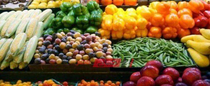 أسعار الخضروات بكافة أنواعه اليوم الخميس 12-09-2019 في الأسواق المصرية