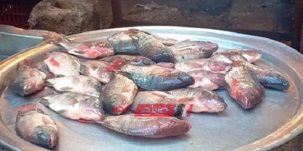 أسعار الأسماك اليوم الخميس 12-9-2019 بمحافظة الإسكندرية