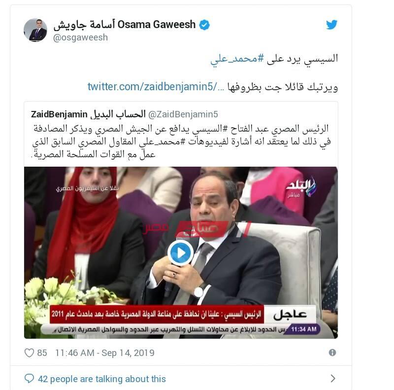 السيسي يرد على محمد علي