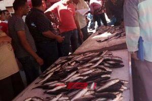 أسعار الأسماك اليوم الثلاثاء 18-2-2020 في الإسكندرية