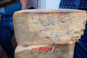 ضبط 50 كيلو من الجبن الغير صالح للاستهلاك قبل بيعها في الإسكندرية