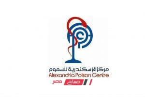 إصابة 5 مواطنين بحالات تسمم بالخمر المغشوش في الإسكندرية