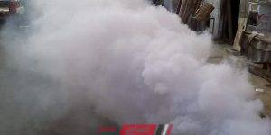 استمرار حملات رش وتطهير الشوارع من الناموس بالإسكندرية