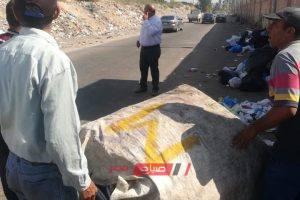 حملة مكبرة للتصدي لظاهرة النباشين بمنطقة سموحة بالإسكندرية