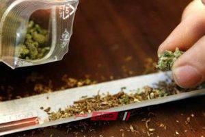 القبض على شخص بحوزته 2 كيلو من مخدر البانجو وبندقية آلية في القليوبية